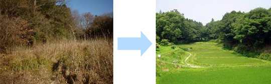 Rice Field in Ravine, Before and After Reclamation