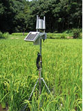 Weather observation sensor system (Product name: Weather Bucket)