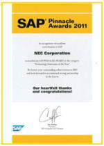 SAP Pinnacle Awards 2011受賞の写真